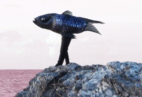 Films du poisson qui marche